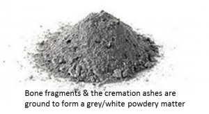 cremated-remains