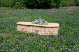 Green Burial Container